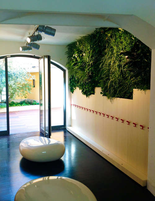Vertical planting, Interior wall plant, Green wall interior for KinderGarten Milan - photo 3.