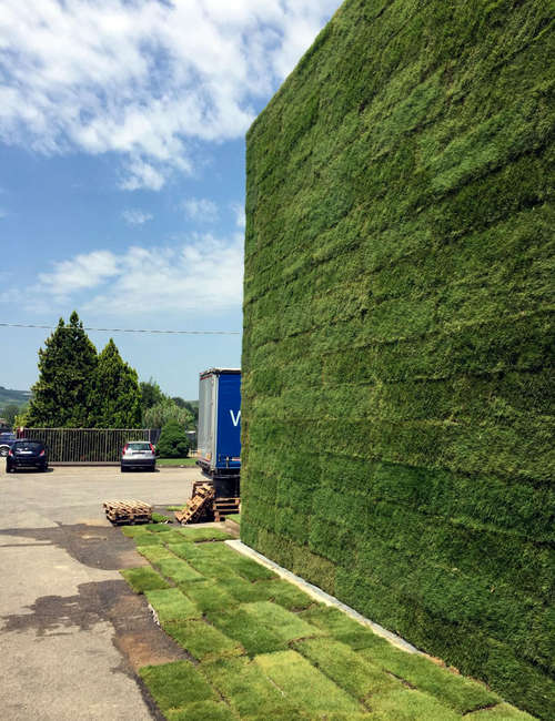 Large vertical gardens, Outdoor vertical garden for Michele Chiarlo Wine company Asti - photo 4.