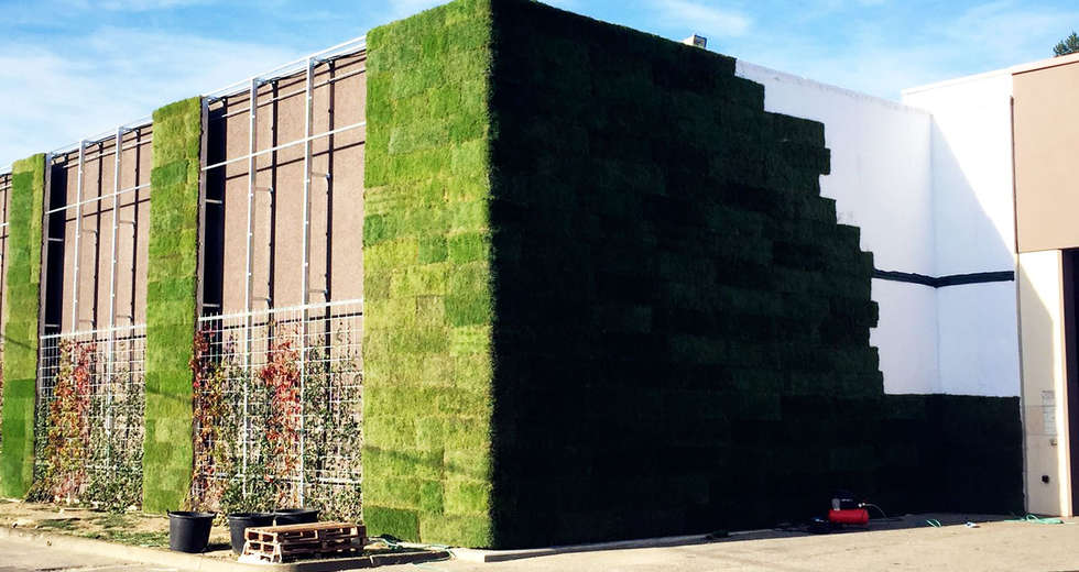 Large vertical gardens, Outdoor vertical garden for Michele Chiarlo Wine company Asti - photo 3.