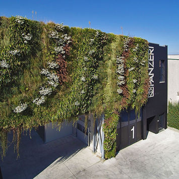 Vertical garden innovation
