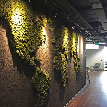 MOSSwall® world map for Casteldex