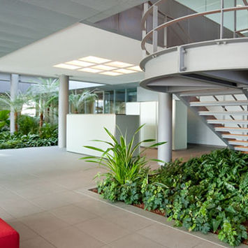 GREEN OFFICES - WELL-BEING AND PRODUCTIVITY