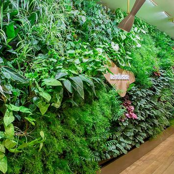 Green wall office - Lendlease Milan