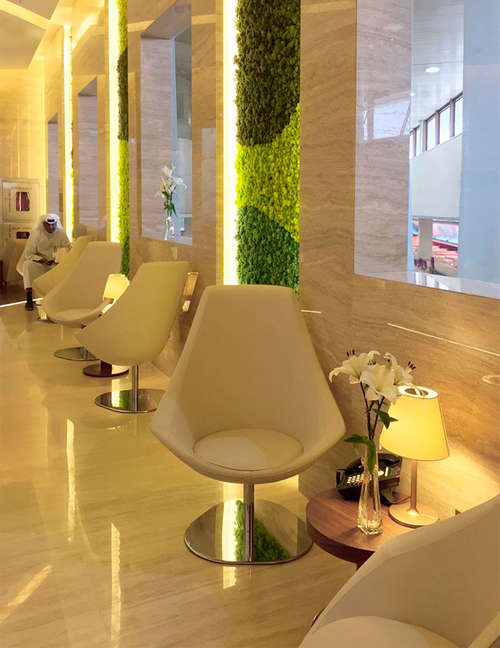 Moss wall design, Biophilic Design, Green wall office for International Airport in Kuwait - photo 2.