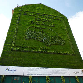 Vertical Gardening - Living Walls