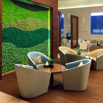 Green wall office - International Airport in Kuwait